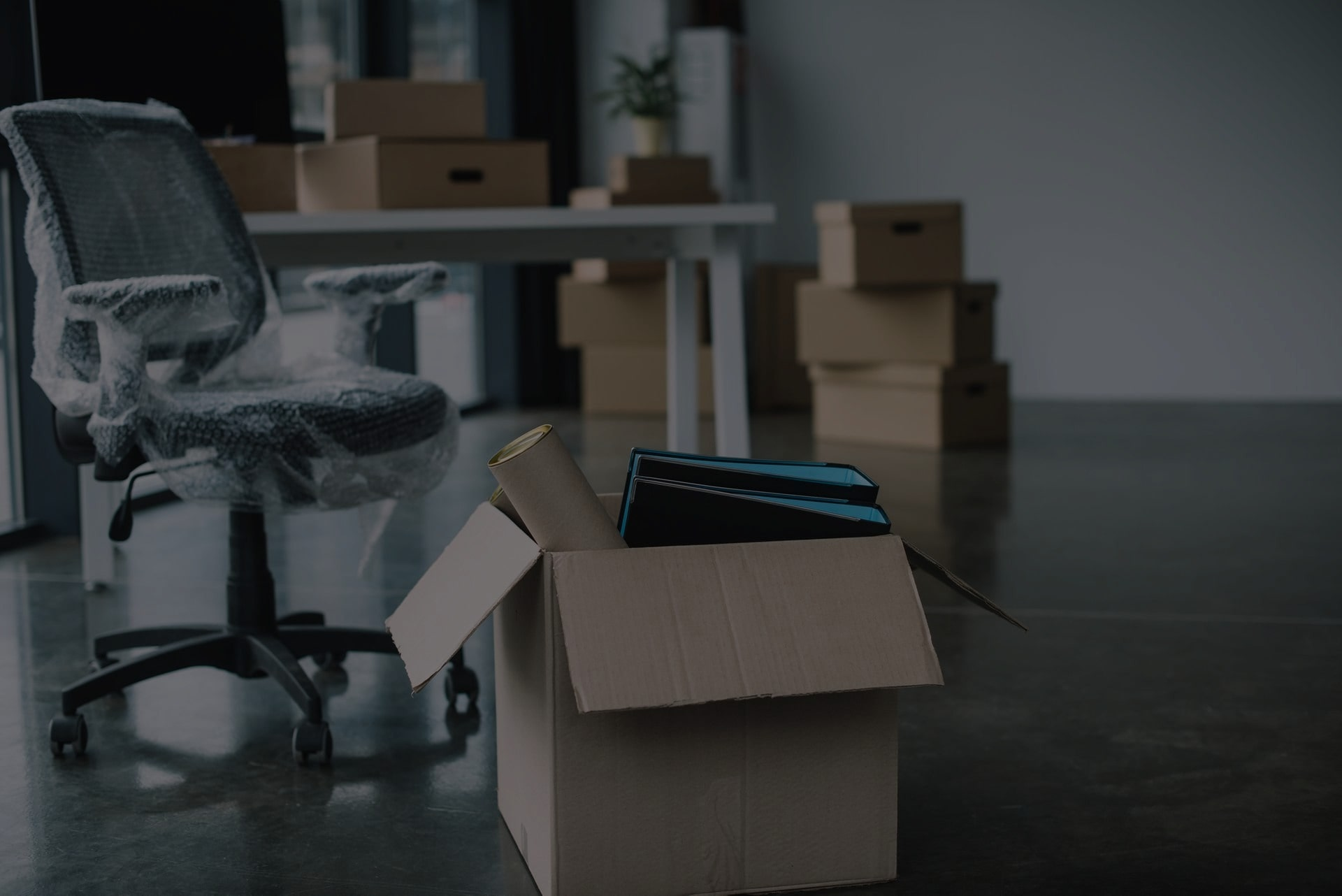 Why Should You Hire a Dumpster for an Office Clean Out