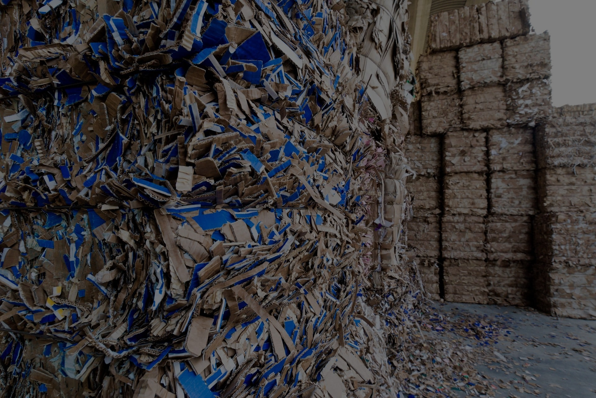 What is the Proper Way to Recycle Paper?